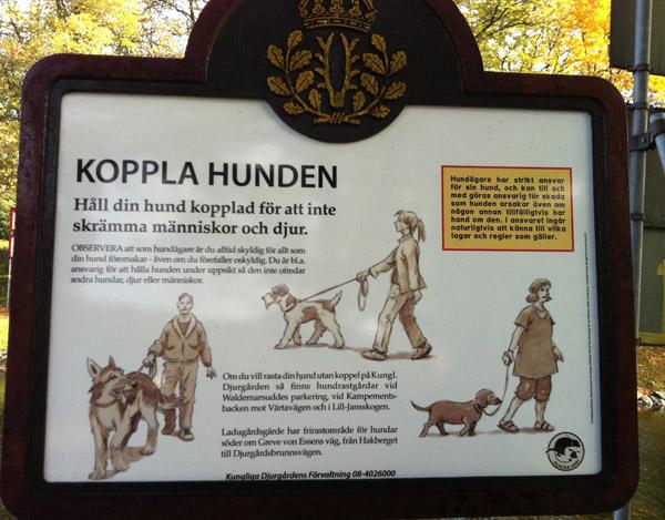 koppla_hunden